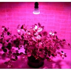 2,2w/3w/4,5w ac220v/230v E27 LED Pflanzenlampe Hydro Wachstumslampe 38/60/80 leds
