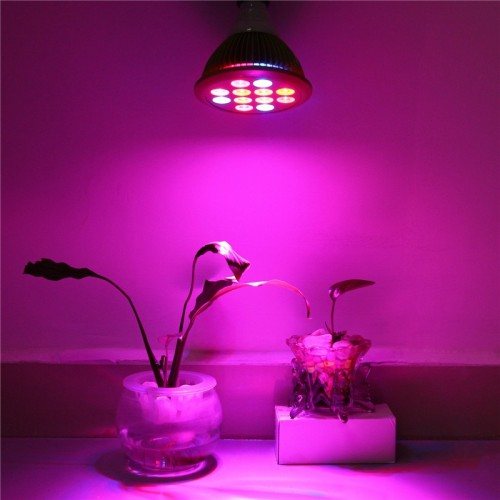 12w ac230v rot blau e27 led pflanzenlampe pflanzenlicht wachstum lampe. Black Bedroom Furniture Sets. Home Design Ideas