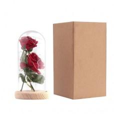 Warmweiß 20-LEDs Lichterkette mit Rot Seide Rose u. Glasabdeckung  Valentinstag Geschenk