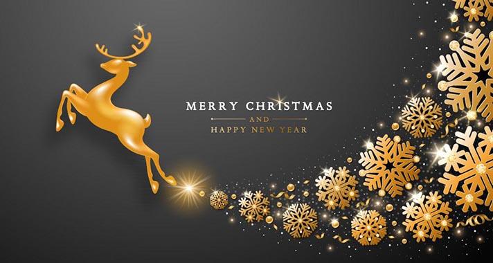 Frohes-Weihnachten-und-Neujahr-2021
